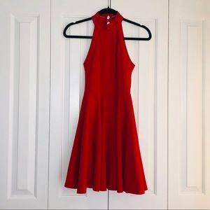 B. Darlin Halter Dress